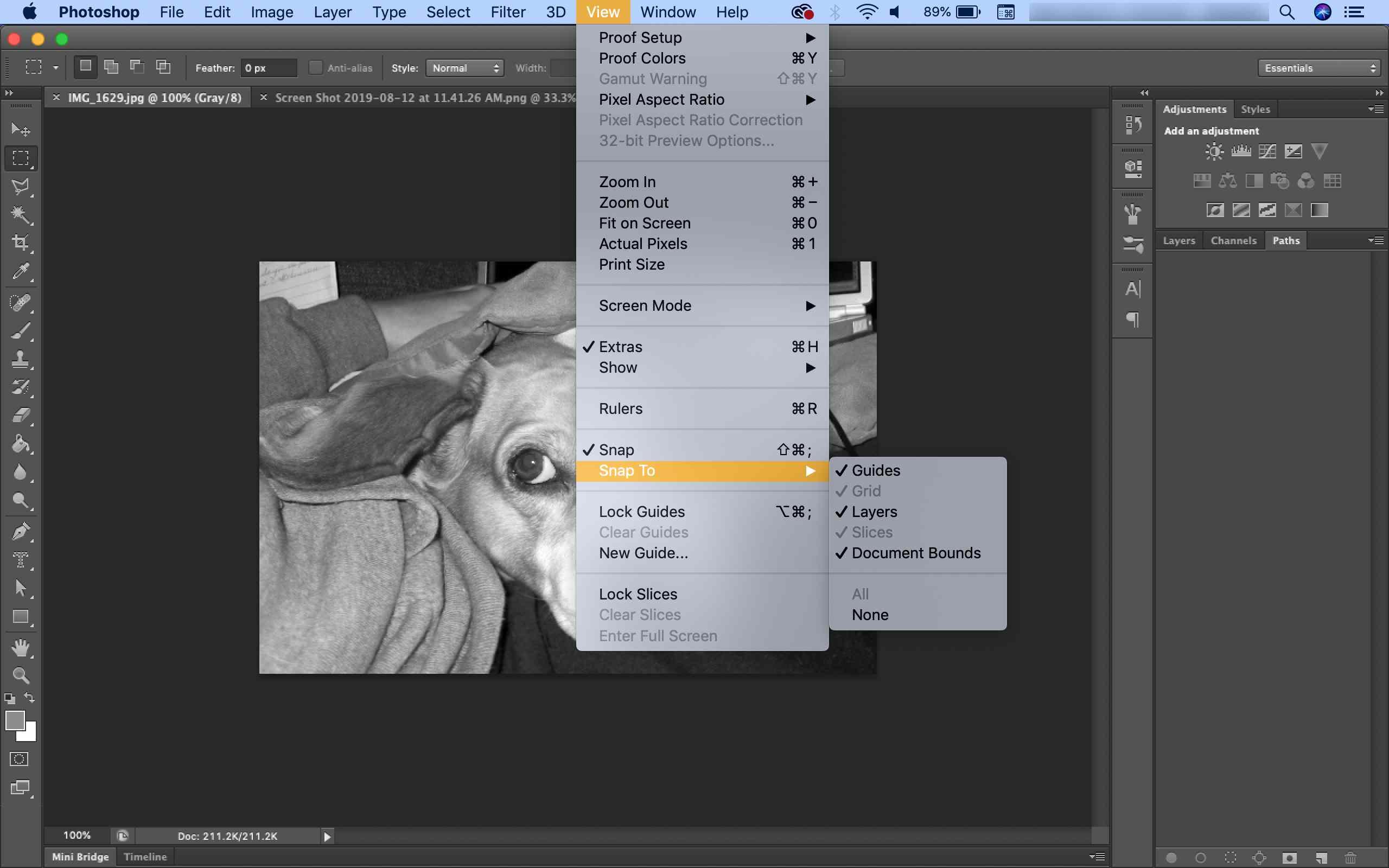 Photoshop View></noscript><IMG  SRC =