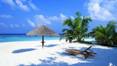 Free beach wallpaper featuring white, sandy beach with palms and a lounger