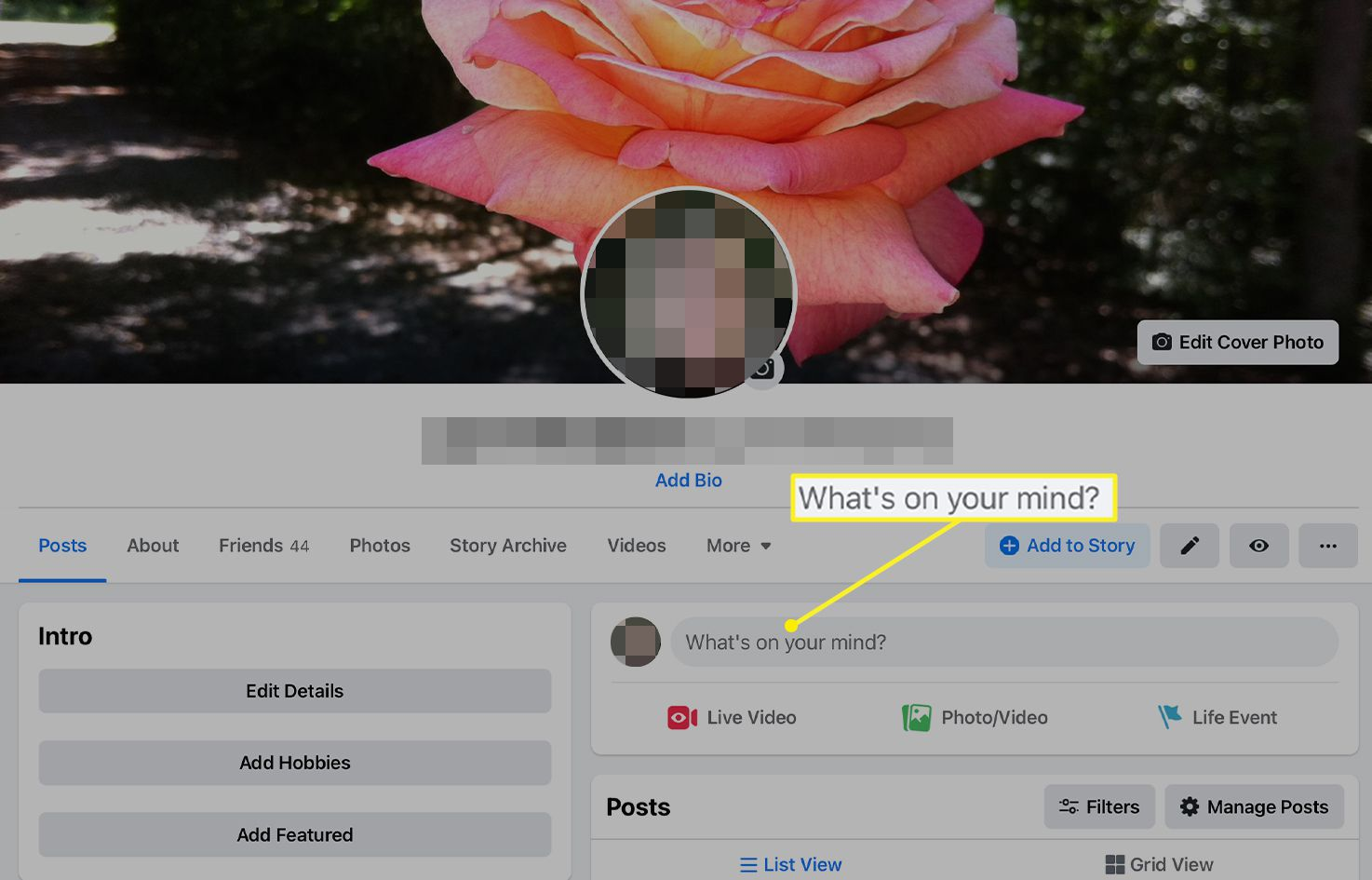 Facebook profile screen with What's on your mind? highlighted