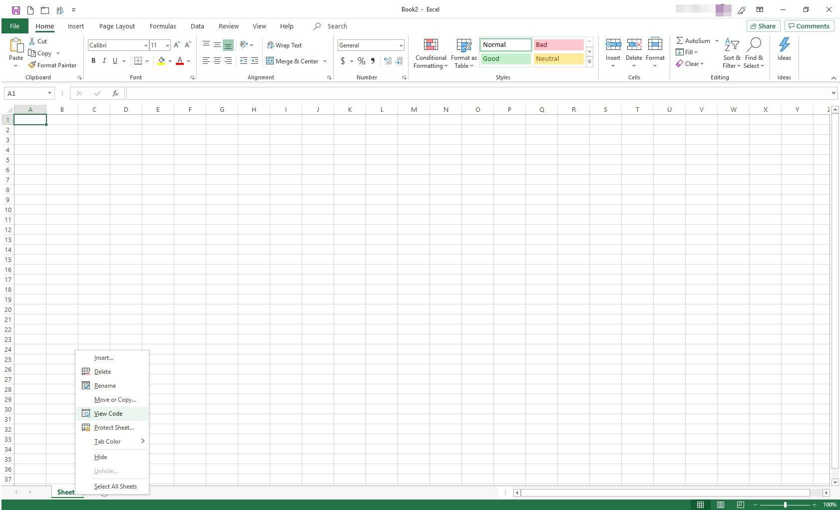 Excel with tab menu displayed