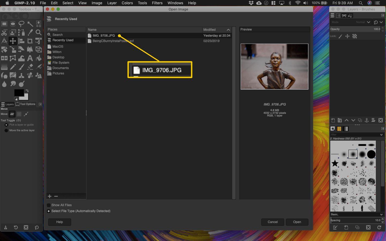 Open dialog box in Gimp for macOS