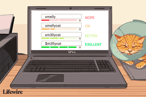 Laptop with strong password options onscreen with a kitty nearby