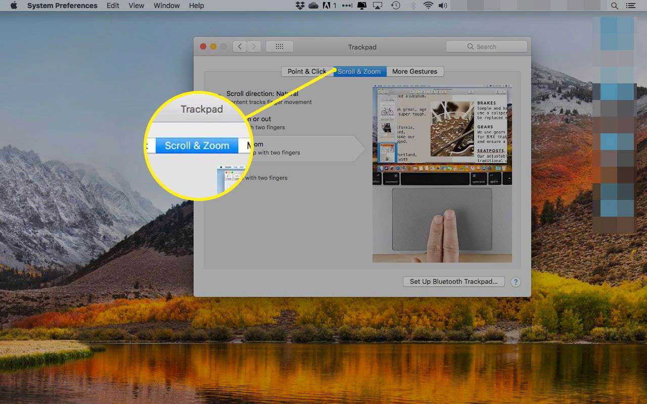 Trackpad preferences in macOS with the Scroll & Zoom tab highlighted