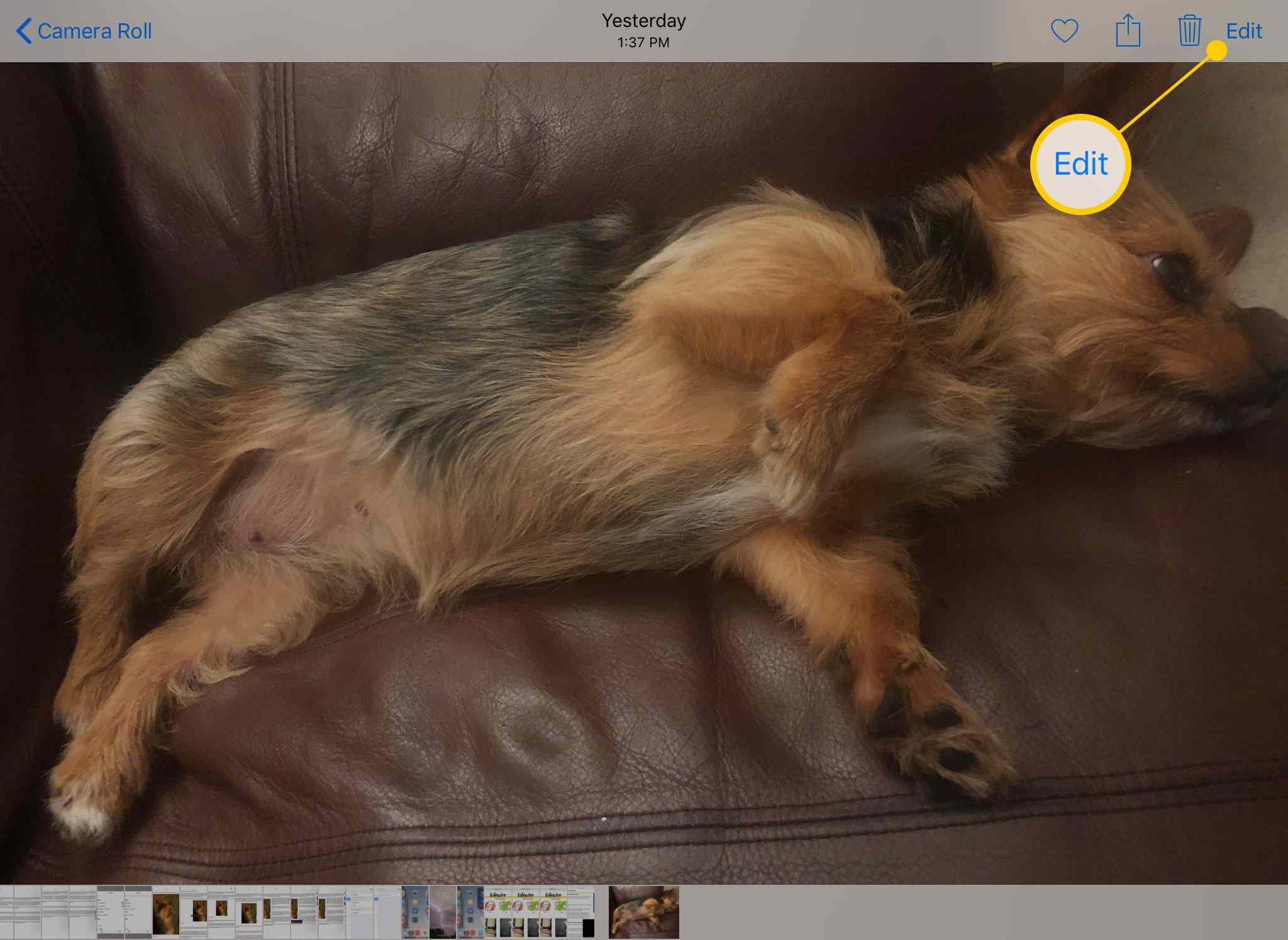 The Edit button in Photos on an iPad