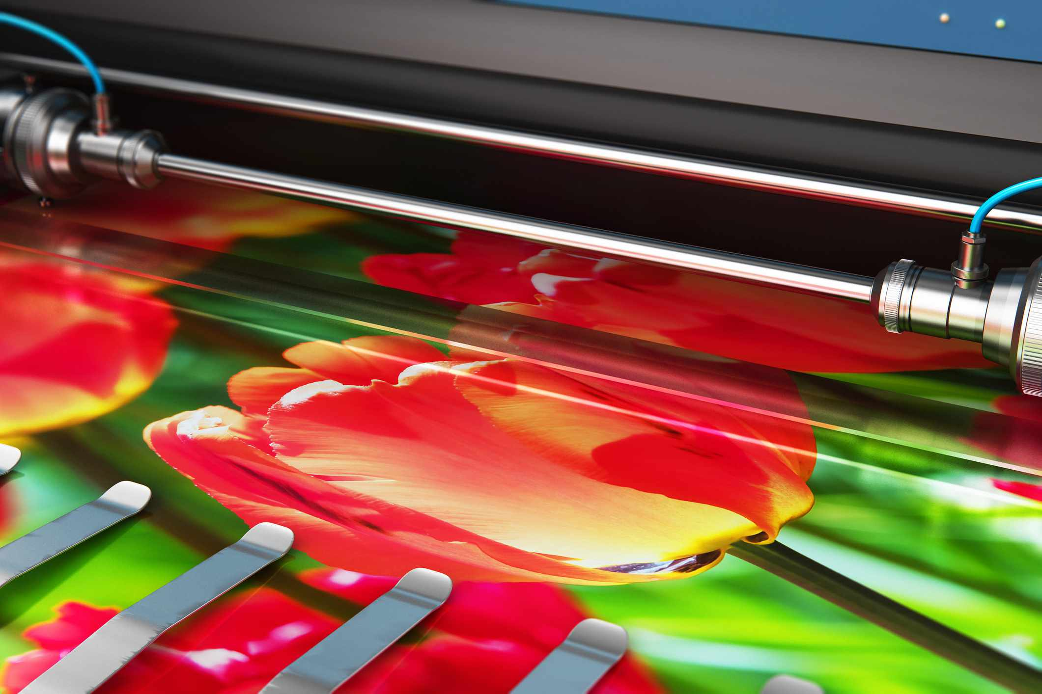Printing photo banner on large format color plotter.