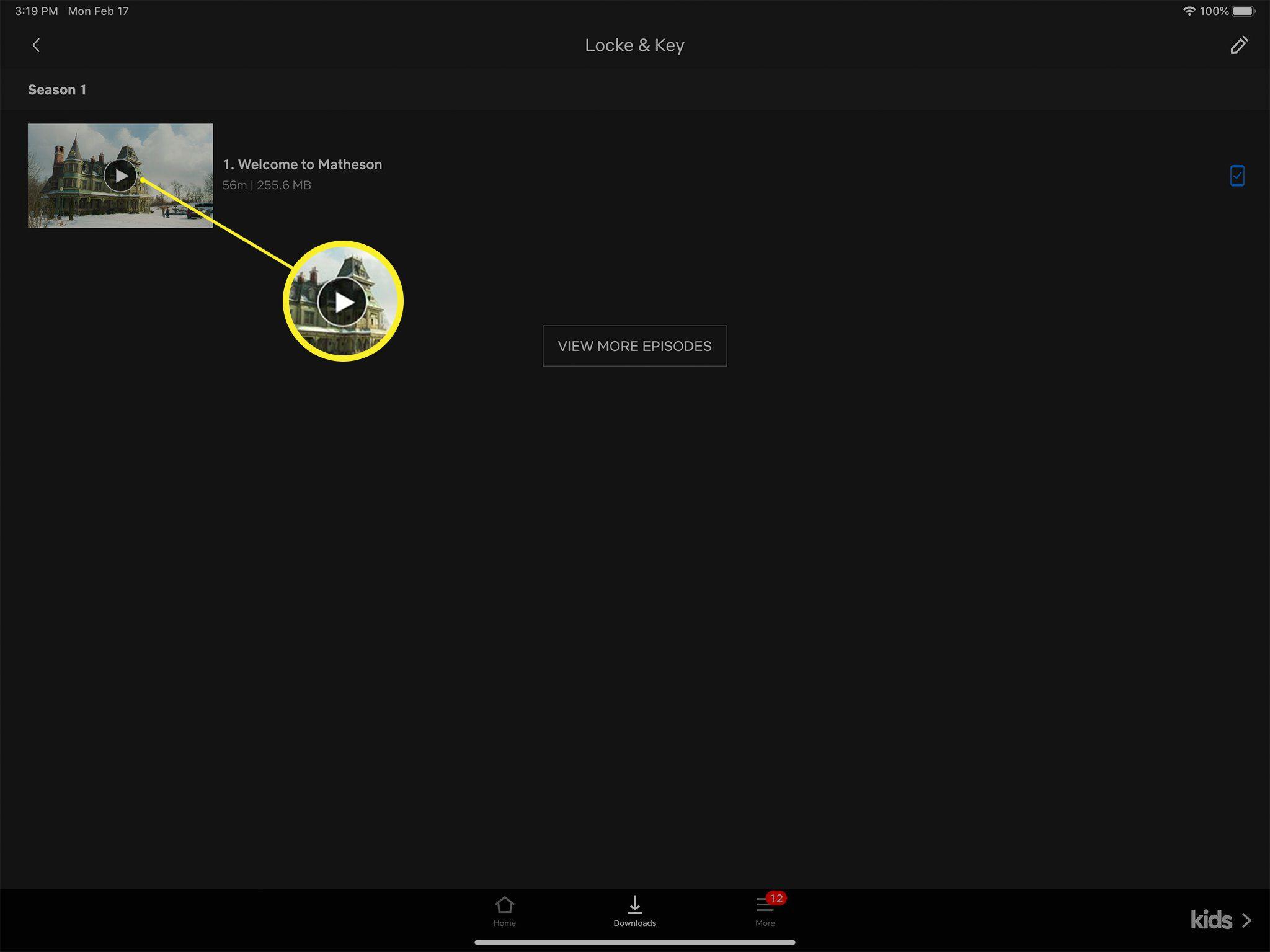 Netflix play button