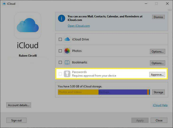 The iCloud for Windows app with Passwords field highlighted running on Windows 10.