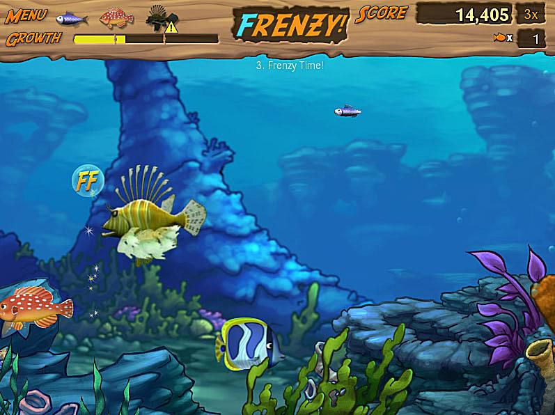 Frenzy Fish Game
