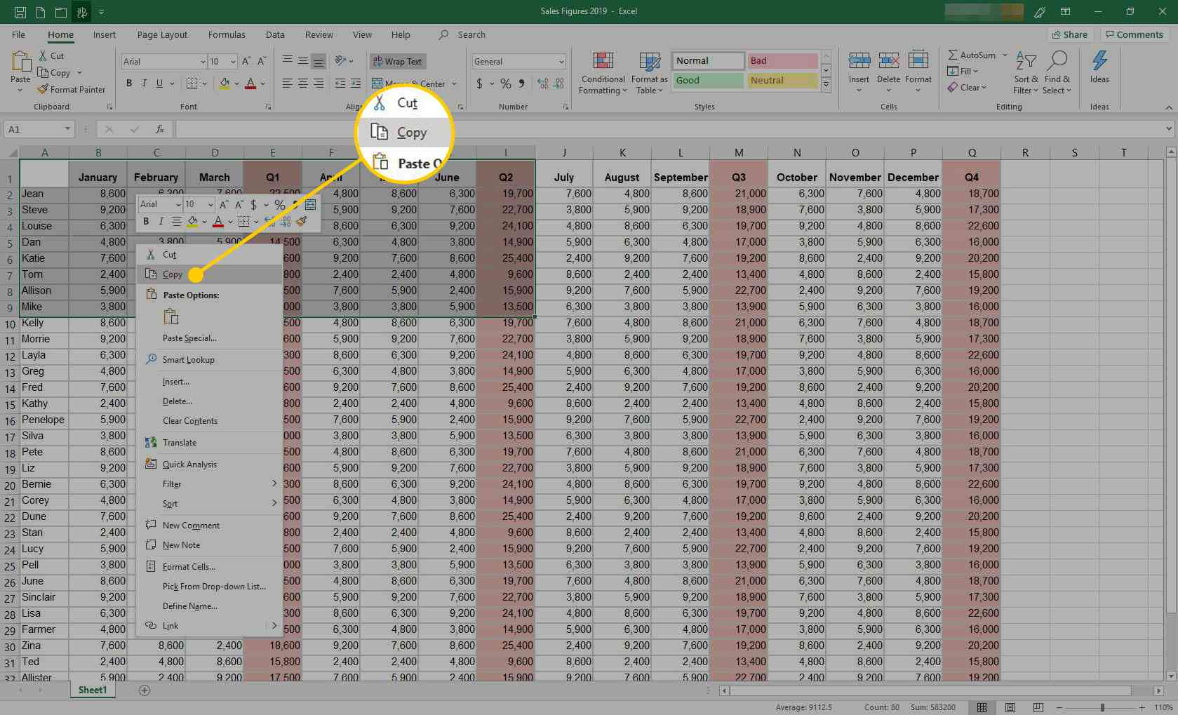 Excel with the Copy command highlighted