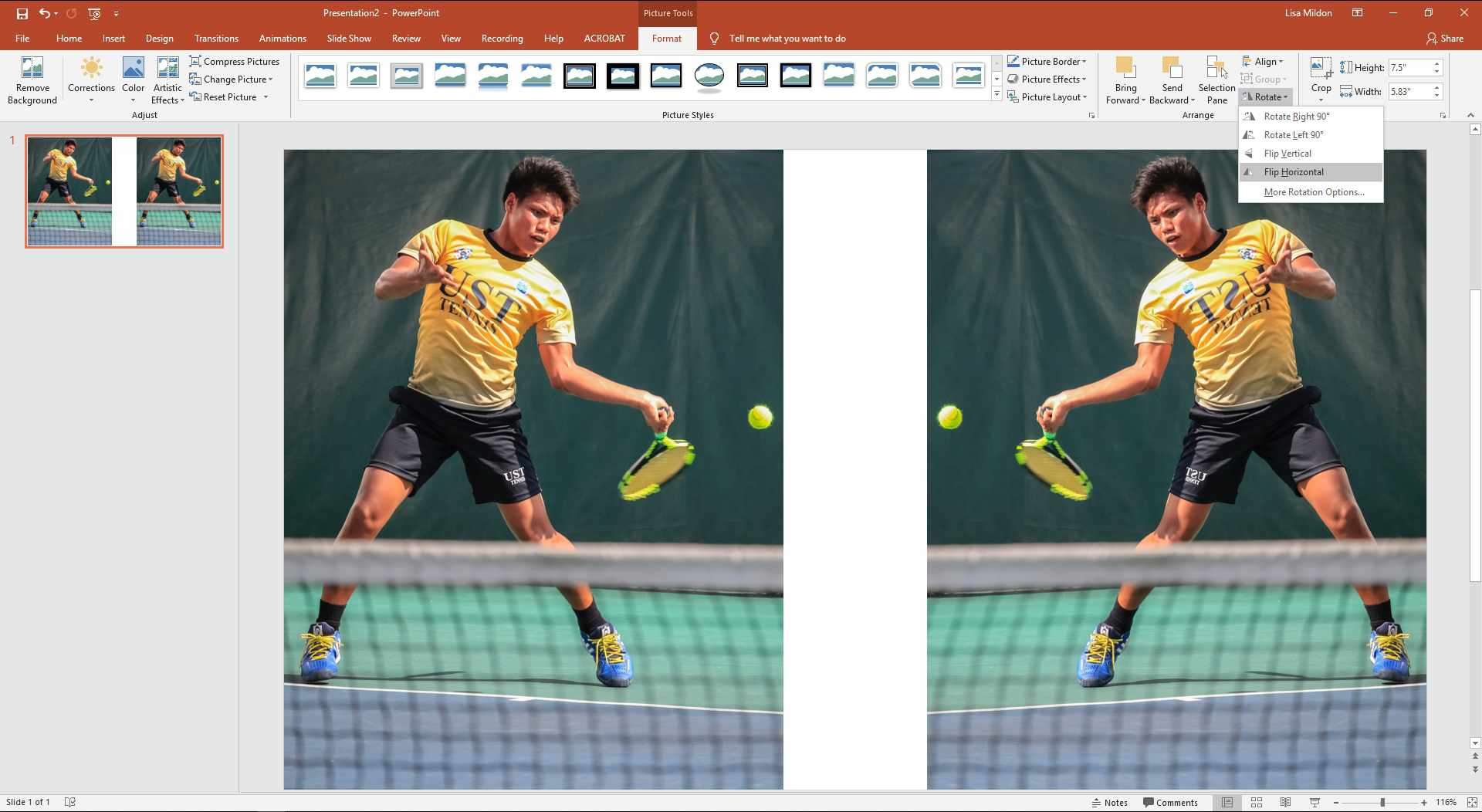 PowerPoint slide showing a picture duplicated and flipped horizontally.