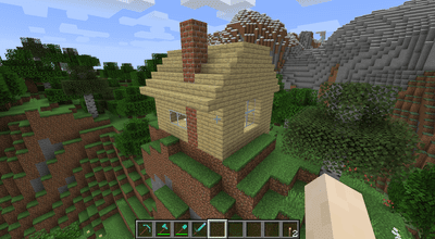 A house in Minecraft.