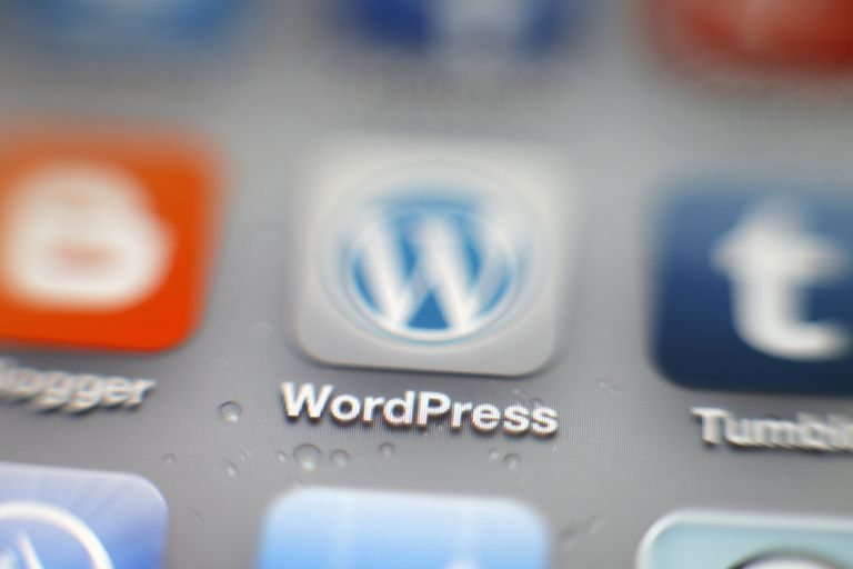 WordPress iPhone app icon