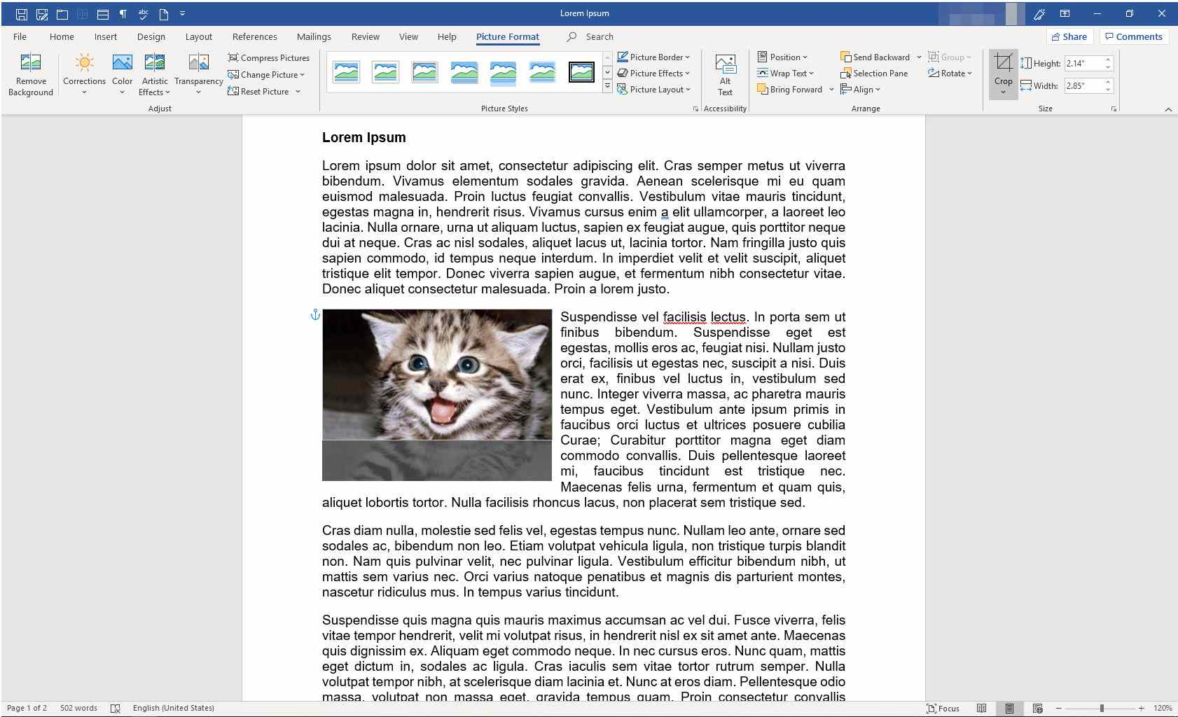 MS Word document with cropped image
