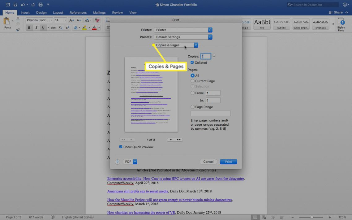 Copies & Pages selected in the print screen.