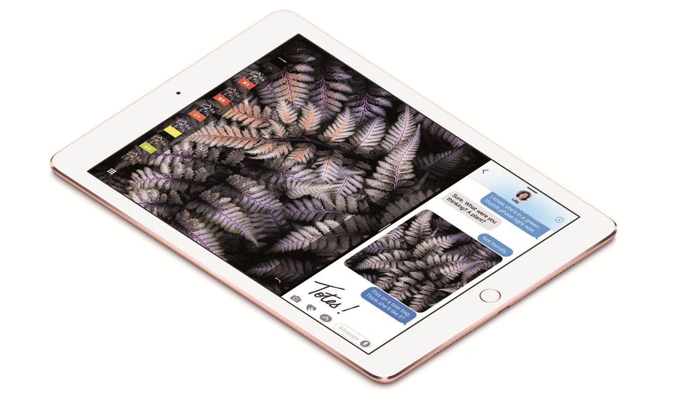 How to Buy a Used iPad And Which Model to Buy