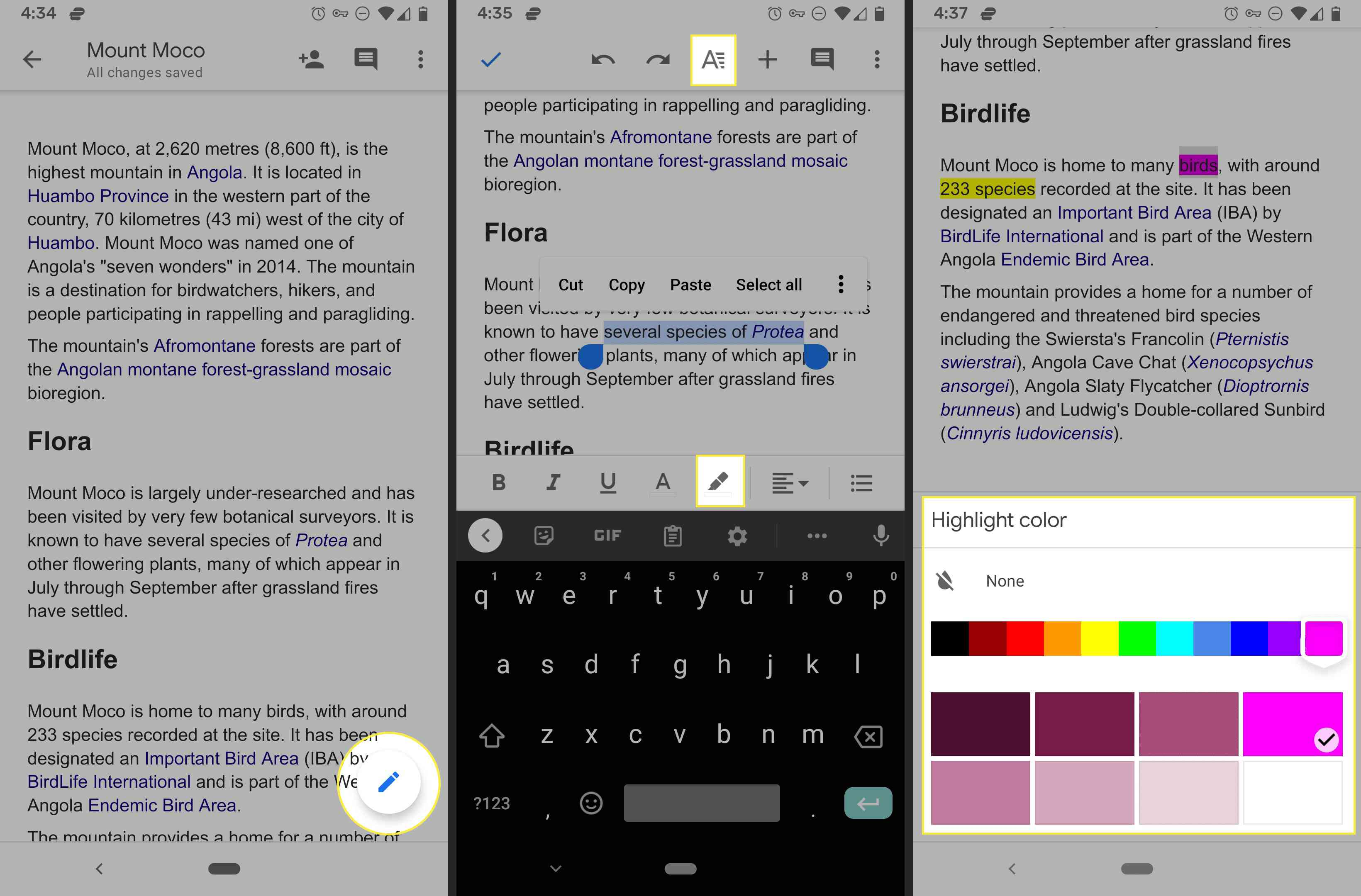Google Docs highlighter in the Android mobile app.