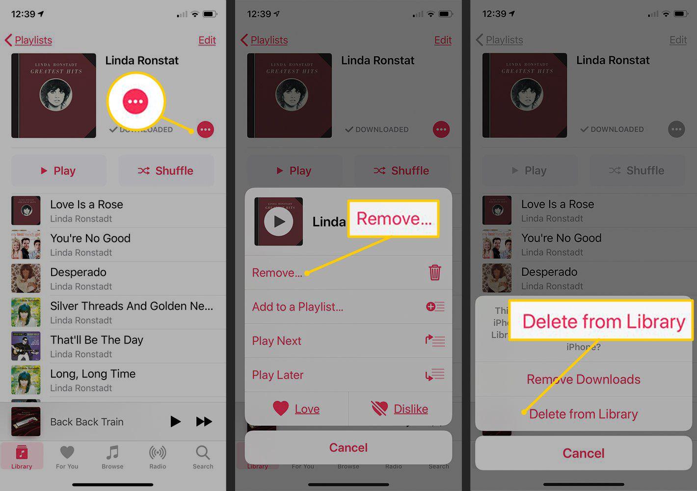 Menu button, Remove, Delete from Library button in iOS Music app