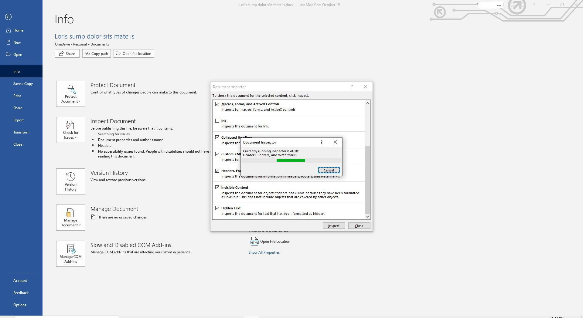 Screenshot of Document Inspector running