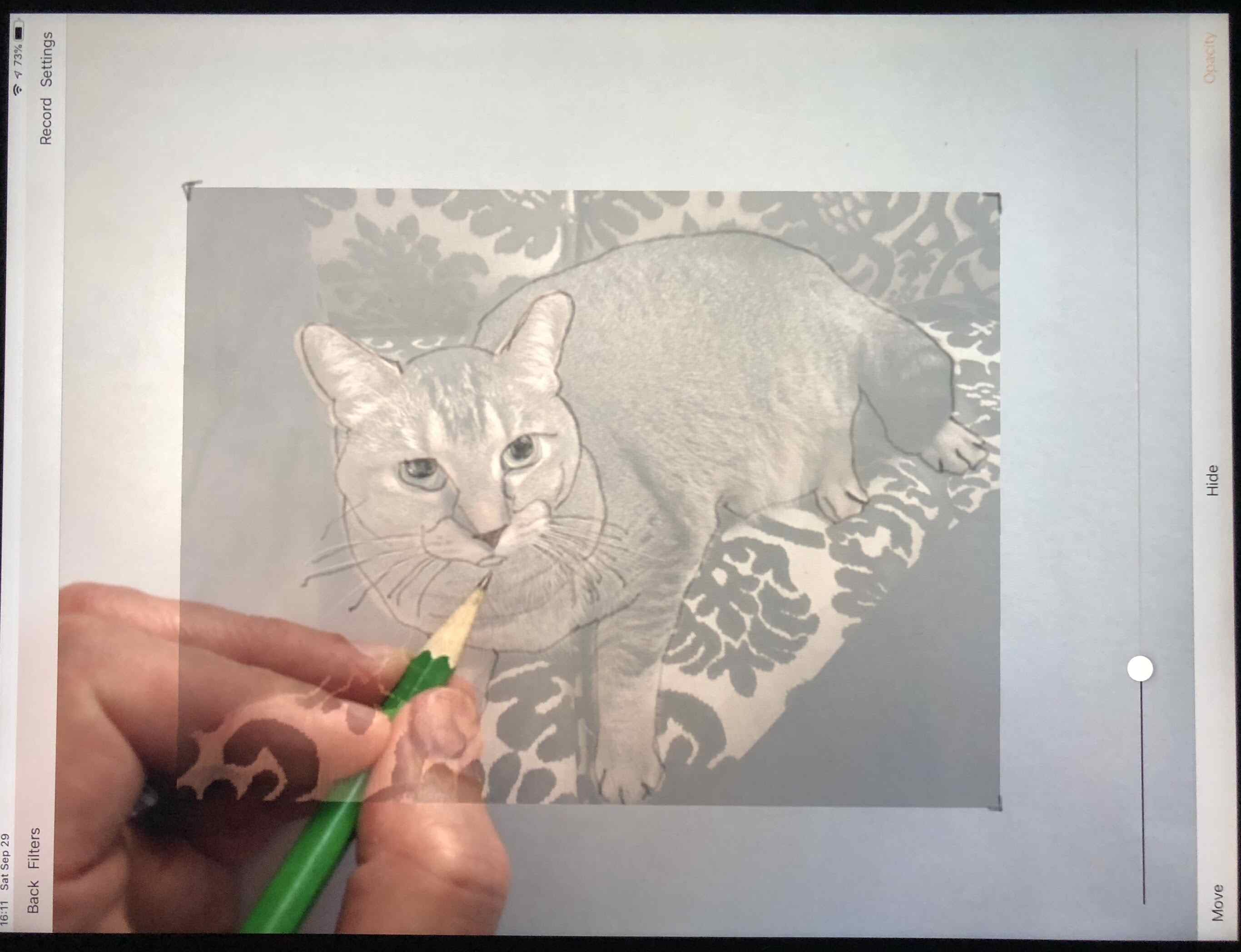 Photo of Da Vinci app, showing a photo of cat on iPad screen, with paper and hand with pencil below, drawing the cat