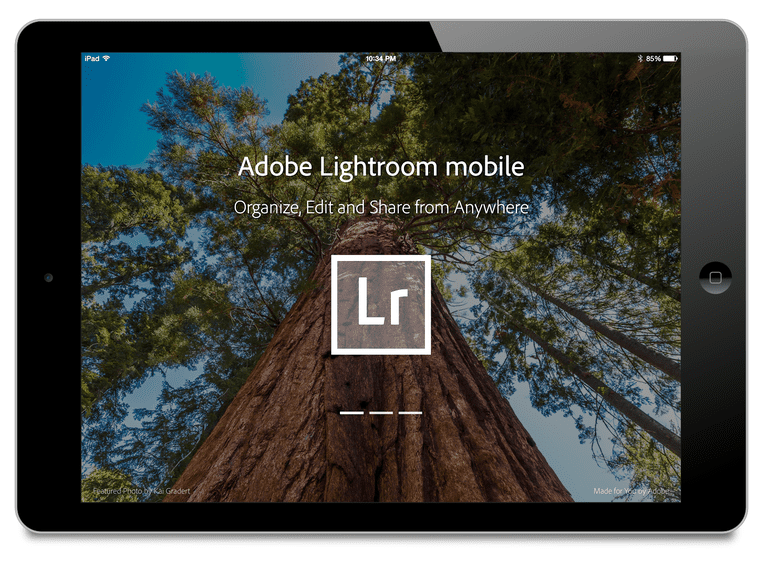 Adobe Lightroom mobile on the iPad
