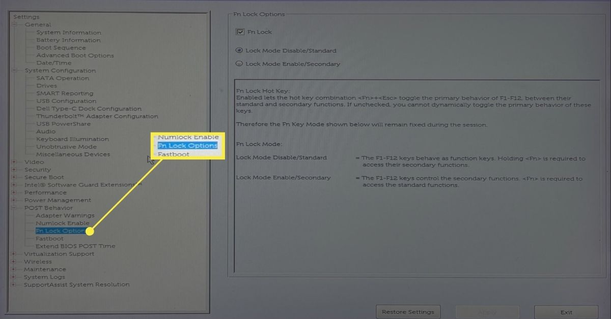 Fn Lock Options in UEFI Dell Windows Laptop