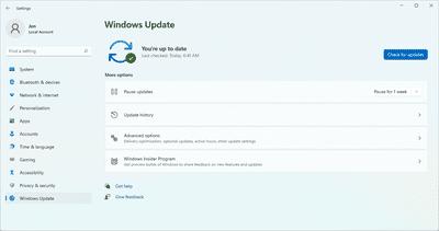 Windows Update utility in Windows 11