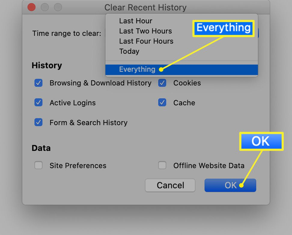 Firefox Clear Recent History options