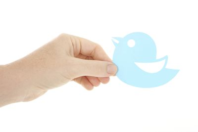 A hand holding a twitter bird/logo