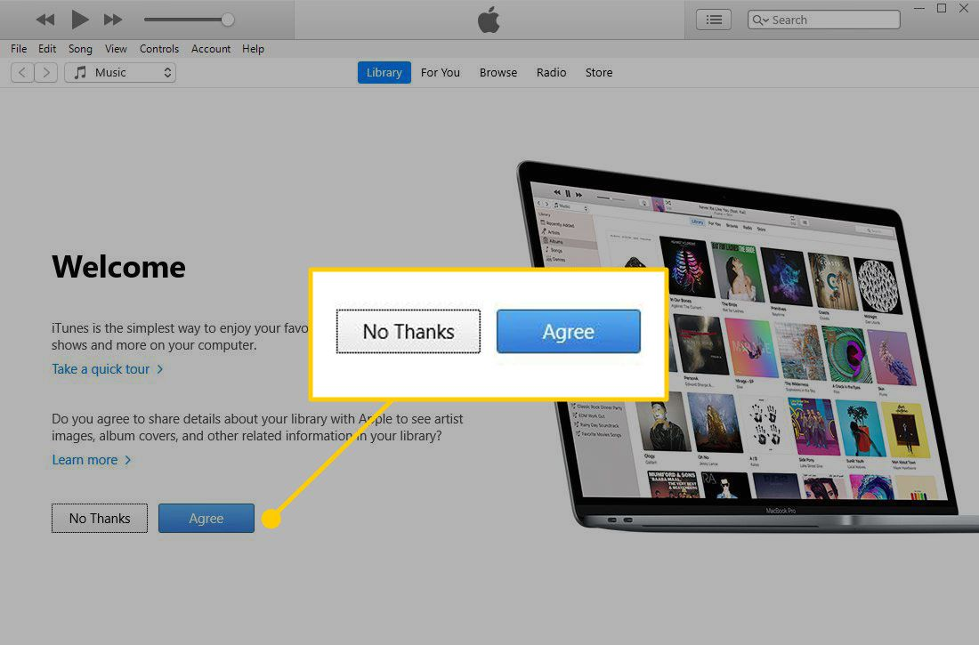 iTunes privacy screen with the No Thanks and Agree buttons highlighted