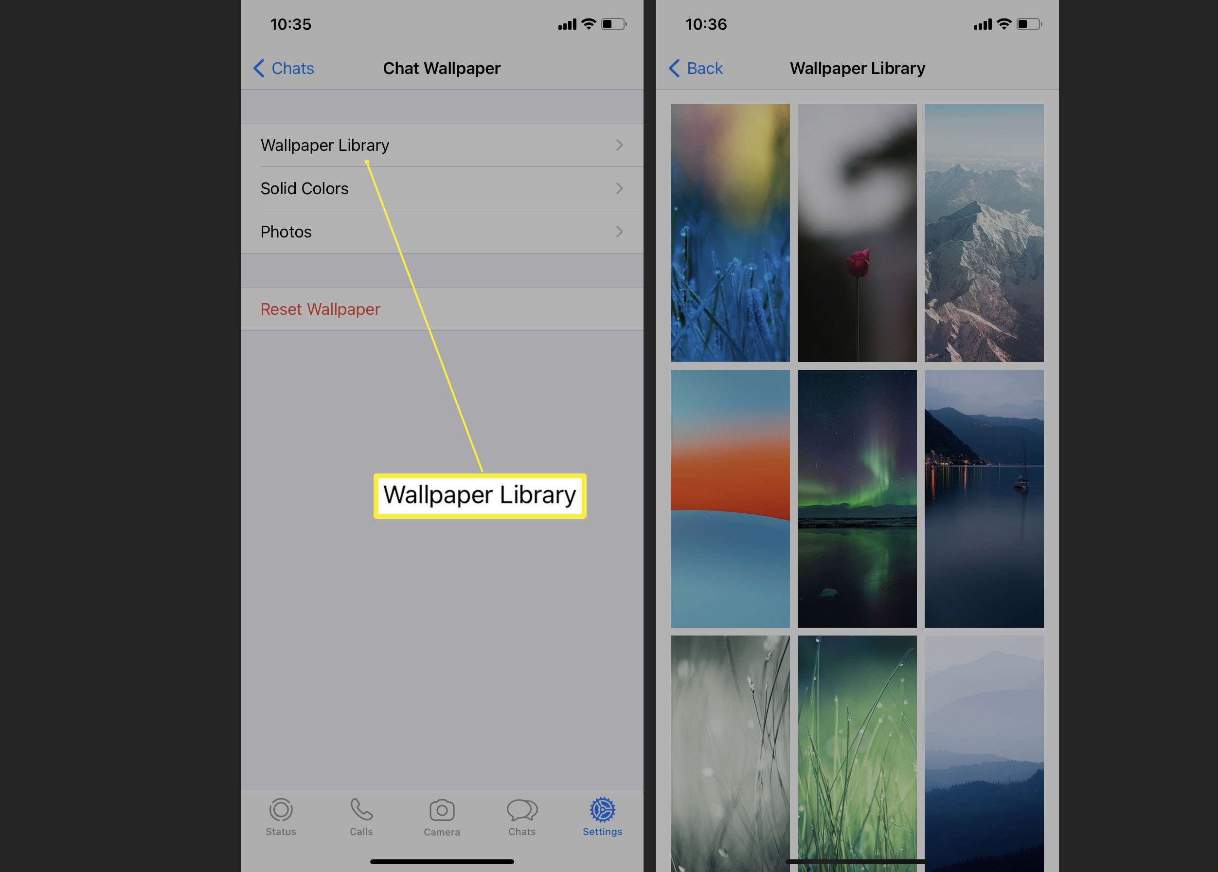Steps needed to change wallpaper on WhatsApp iOS