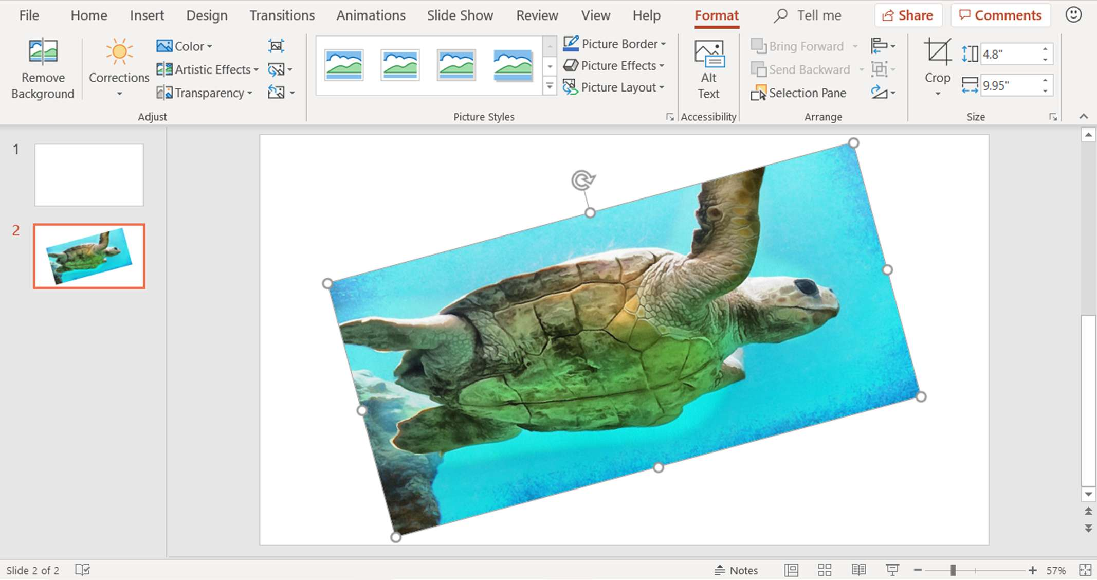 A screenshot showing how to rotate a picture by 15 degree increments in PowerPoint