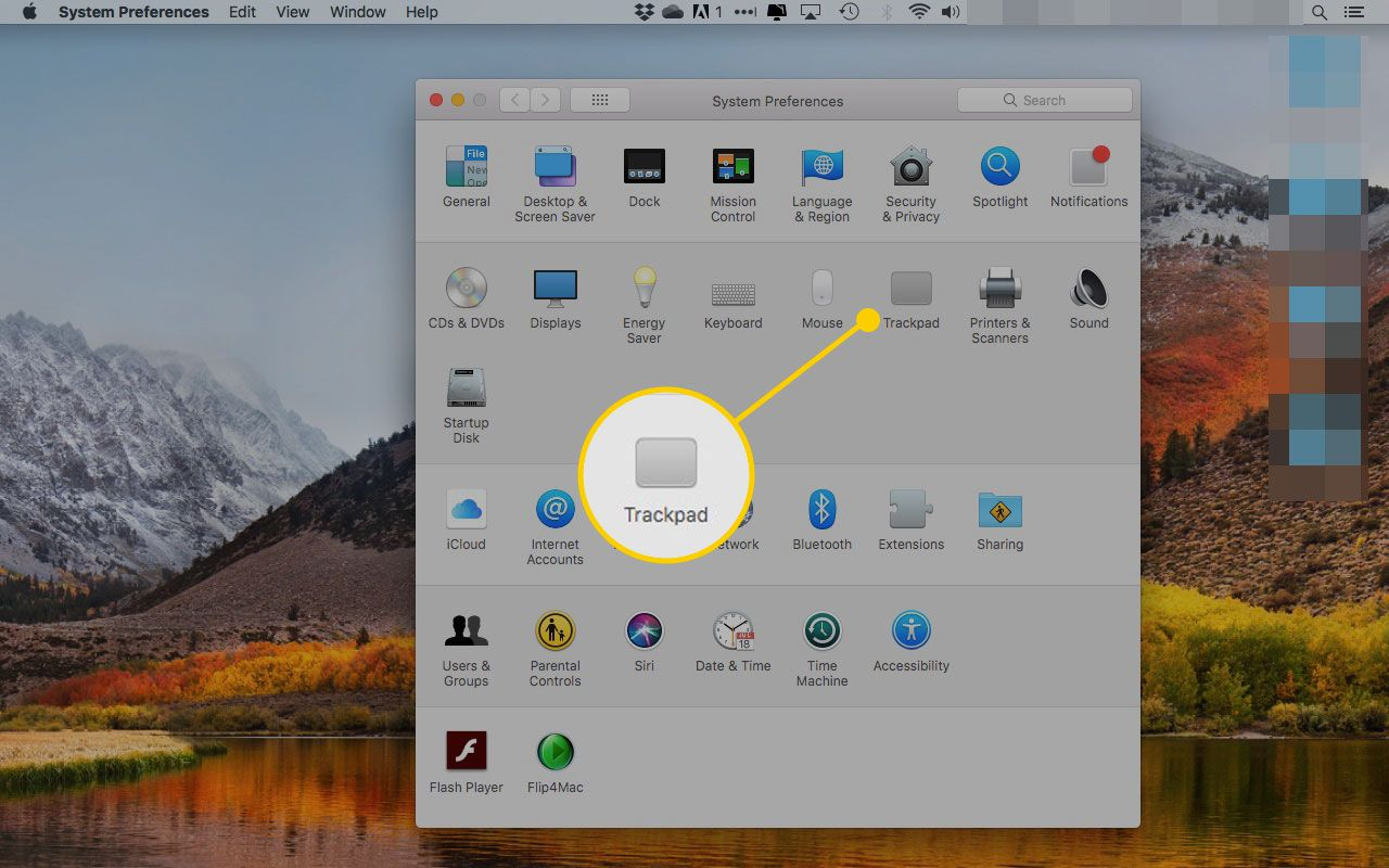 Mac System Preferences with the Trackpad section highlighted