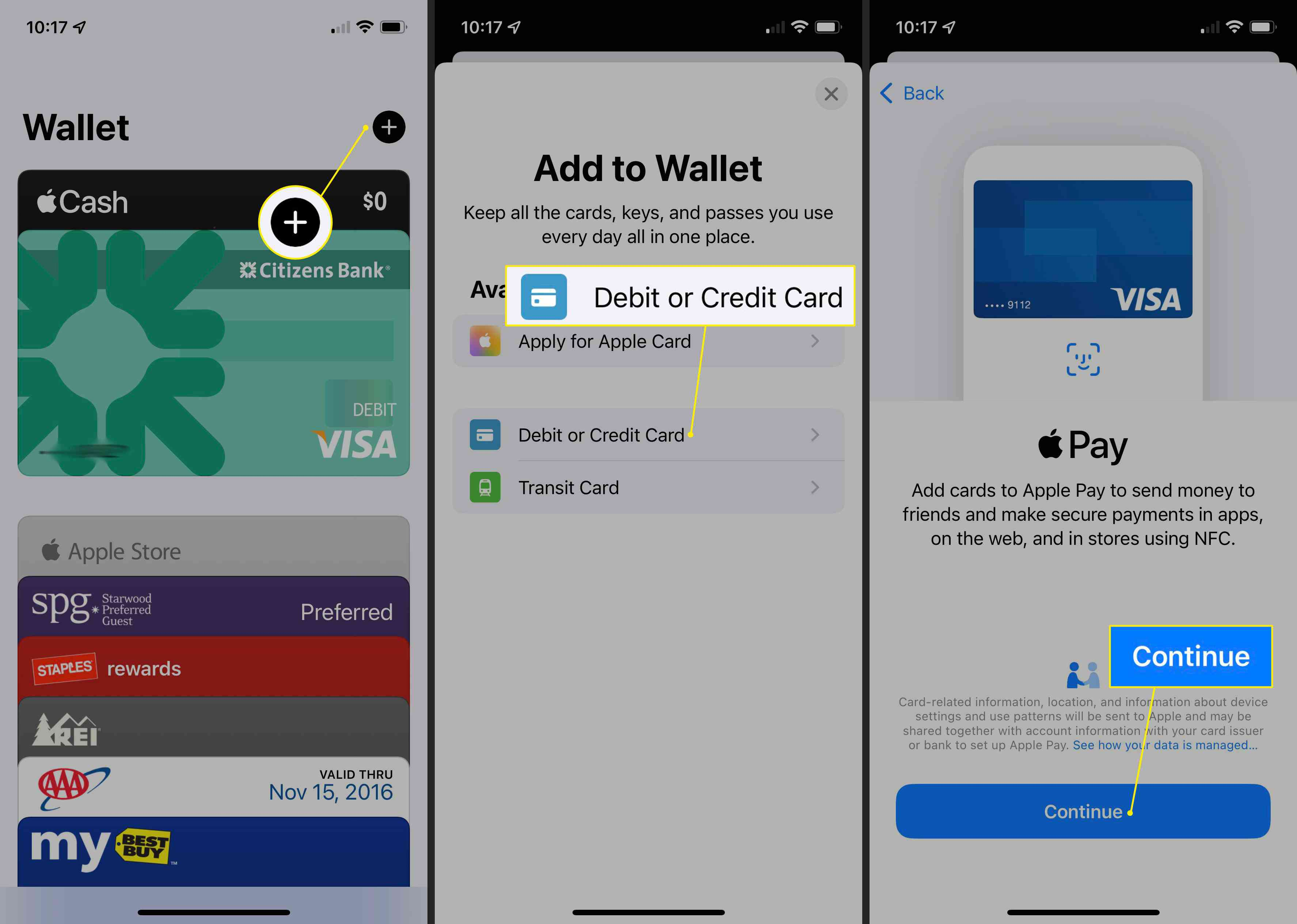 Plus (+), Debit or Credit Card, and Continue in Apple Pay app