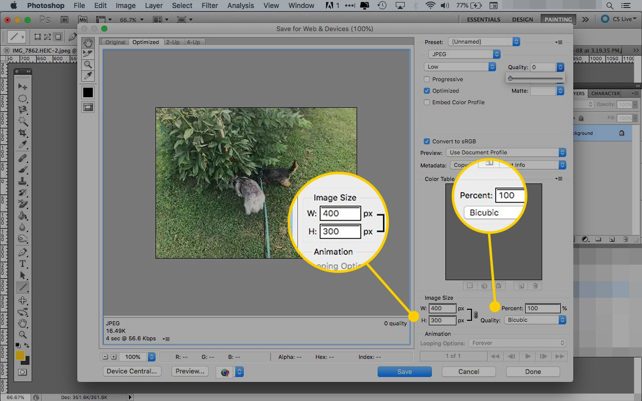 Save for Web & Devices window in Photoshop with the Image Size and Percent areas highlighted