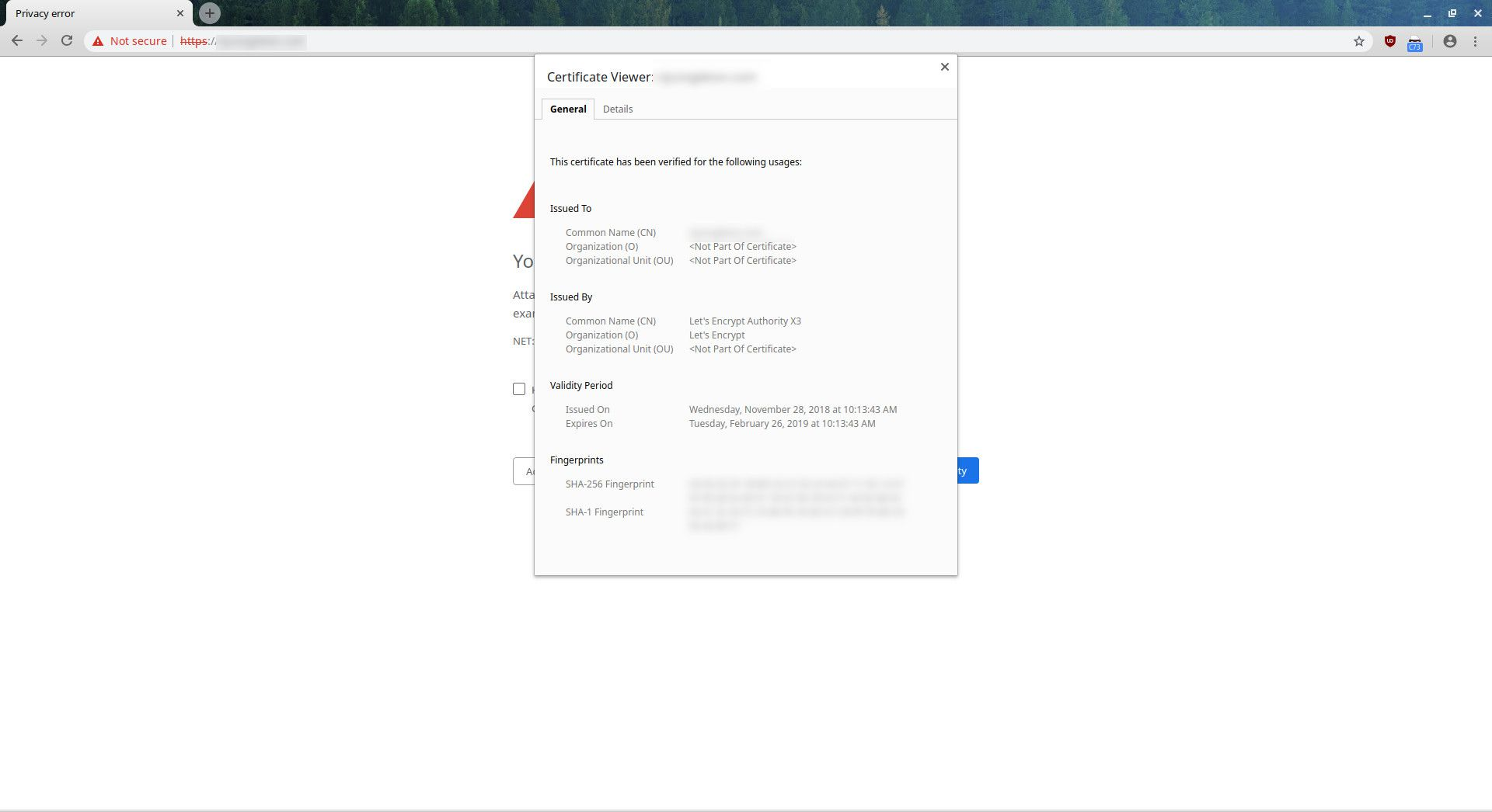 How to Fix A Privacy Error In Chrome