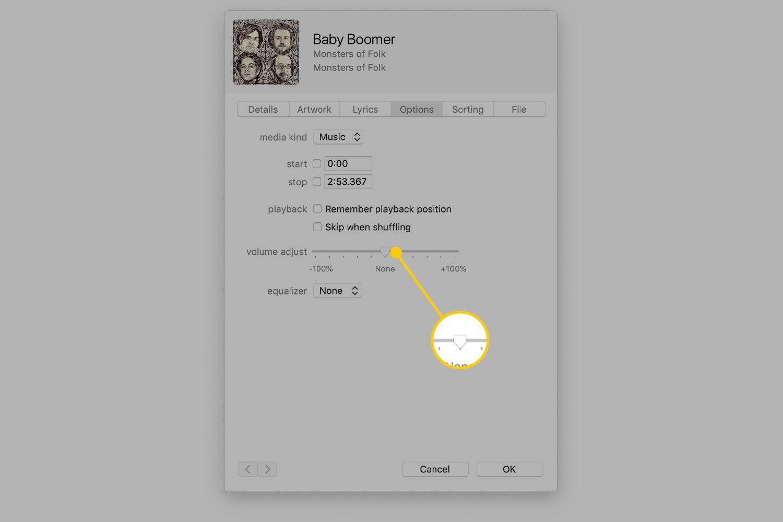 Volume Adjust slider in iTunes