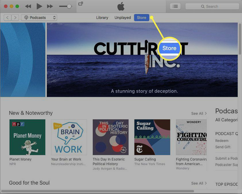 Selecting Store in iTunes Store