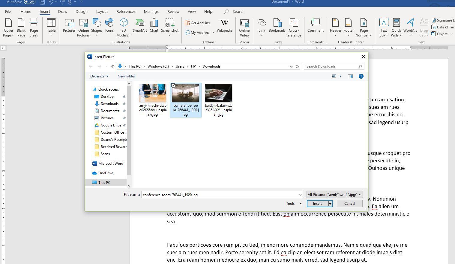 Screenshot of Insert Picture dialog box