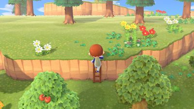 Using a ladder in Animal Crossing: New Horizons.