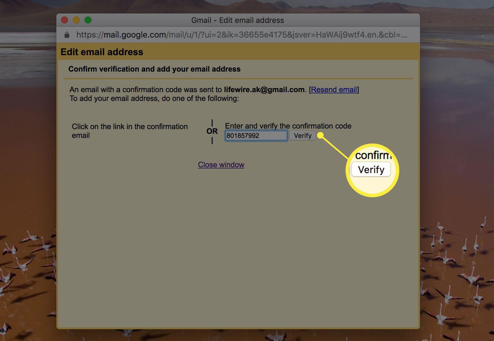 The Verify button