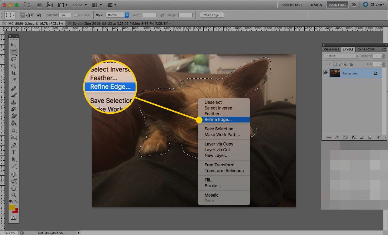 A selection in Photoshop with the right-click menu open. Refine Edge is highlighted