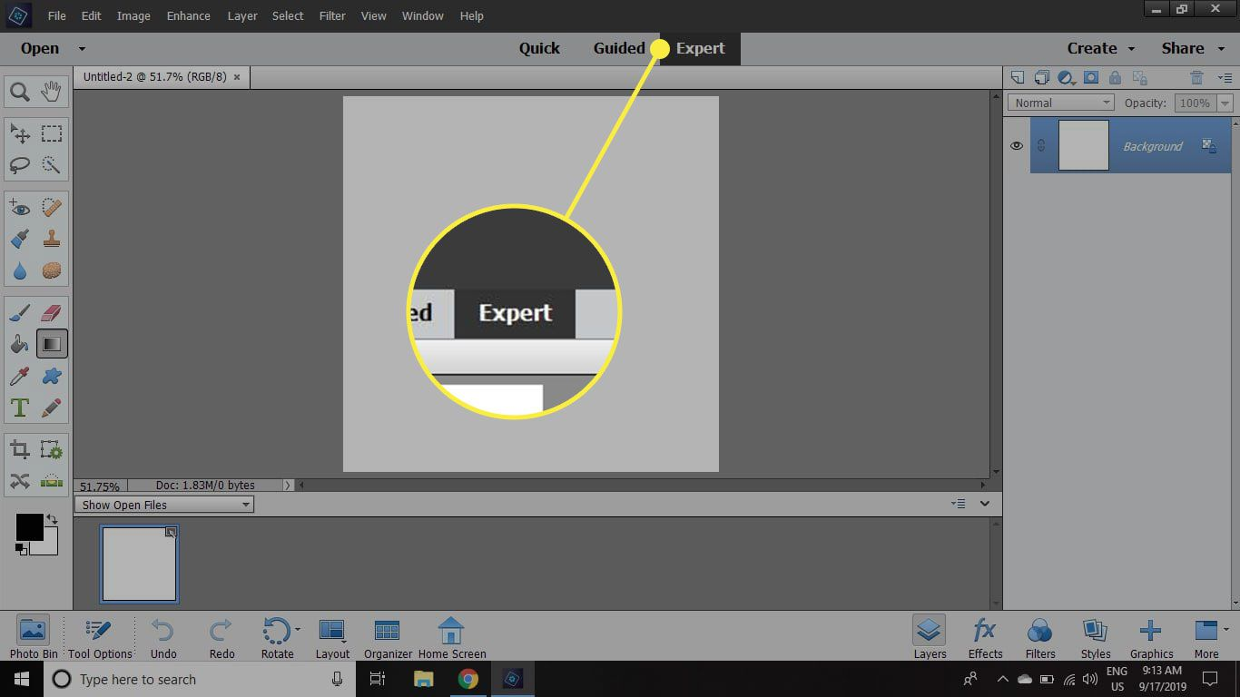 The Expert tab