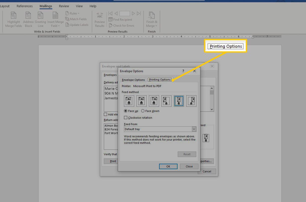 Printing Options tab