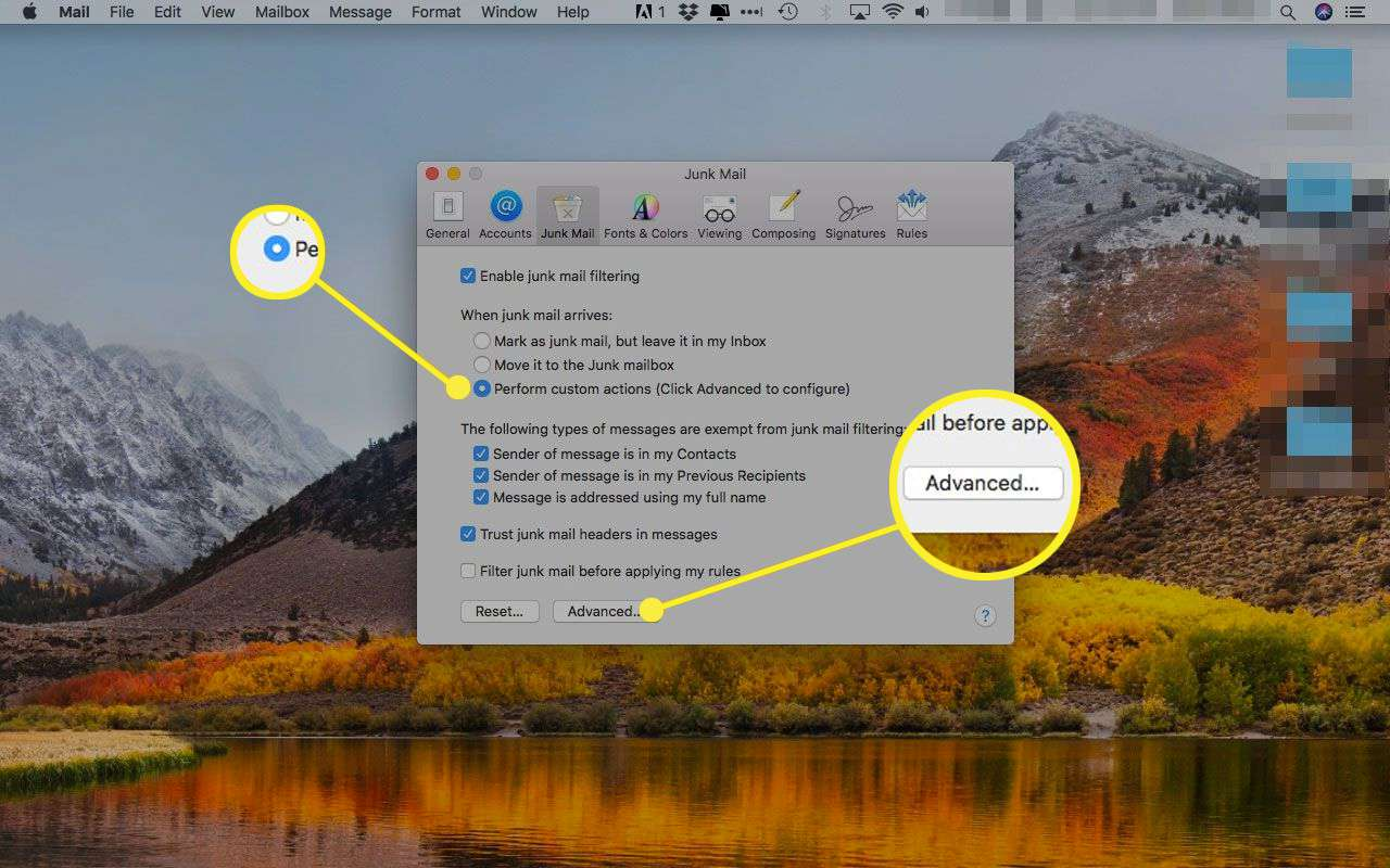 Apple Mail's Junk Mail preferences with the
