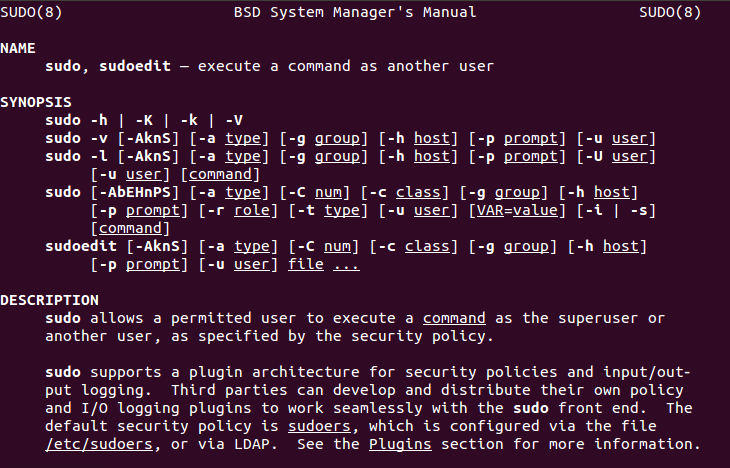 Screenshot of the sudo Command