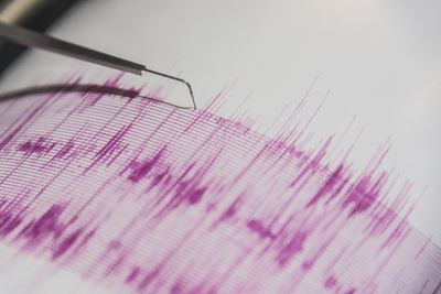 A seismometer at work