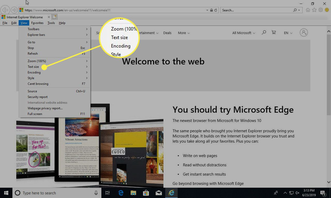 A screenshot of Internet Explorer with the Text Size option under the View menu highlighted