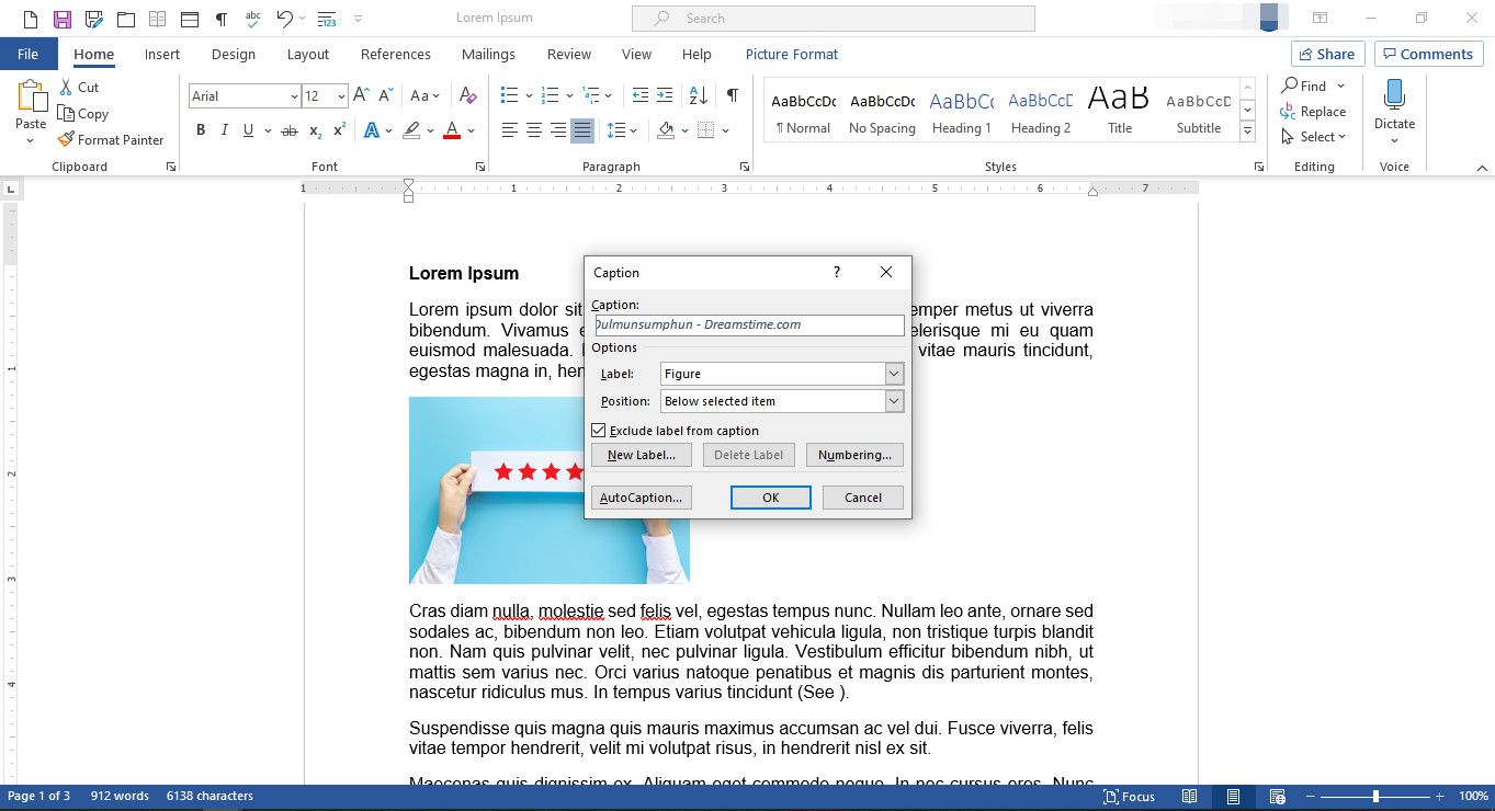 MS Word with Caption dialog box displayed