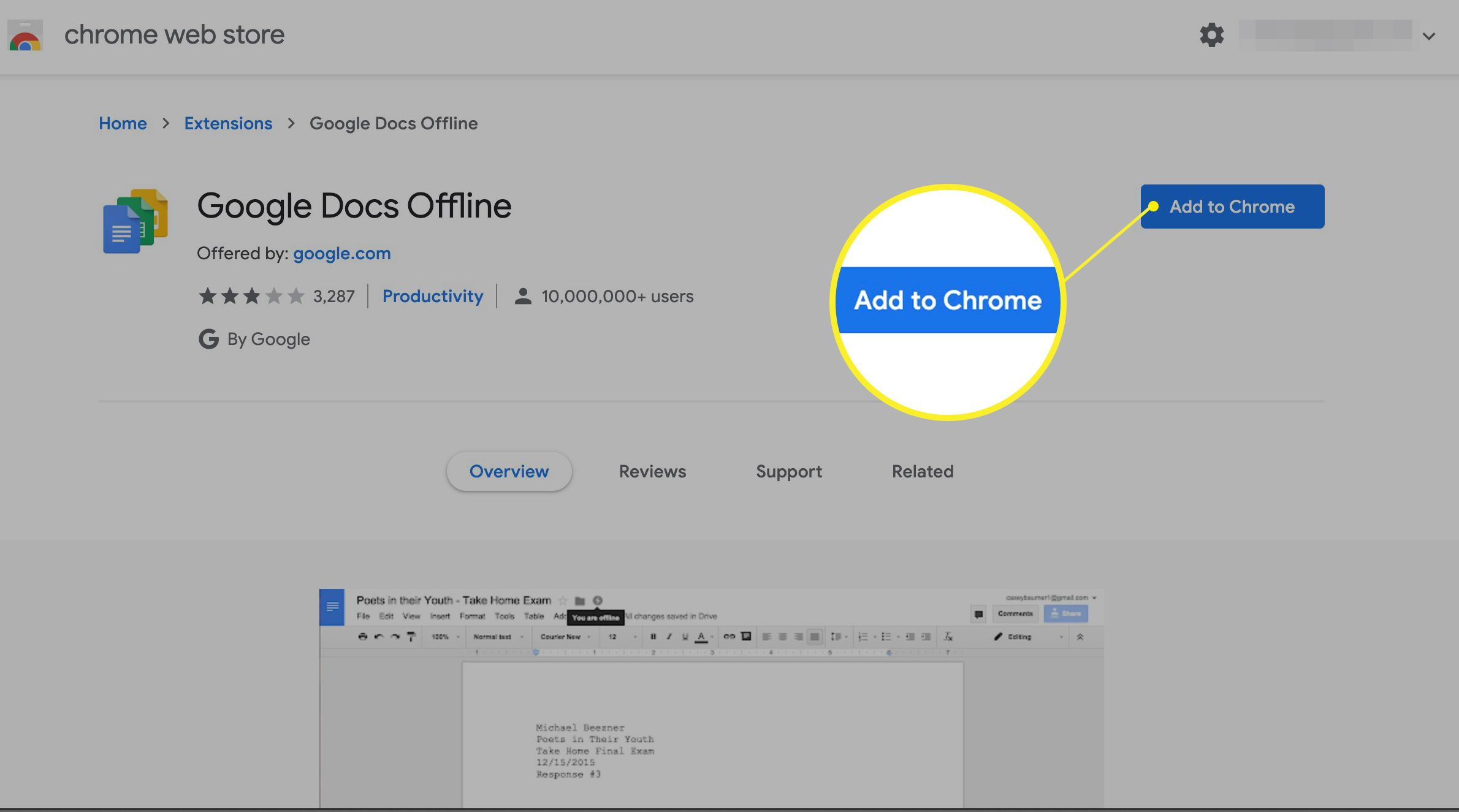Add the Google Docs Offline extension to Chrome in Chrome Web Store