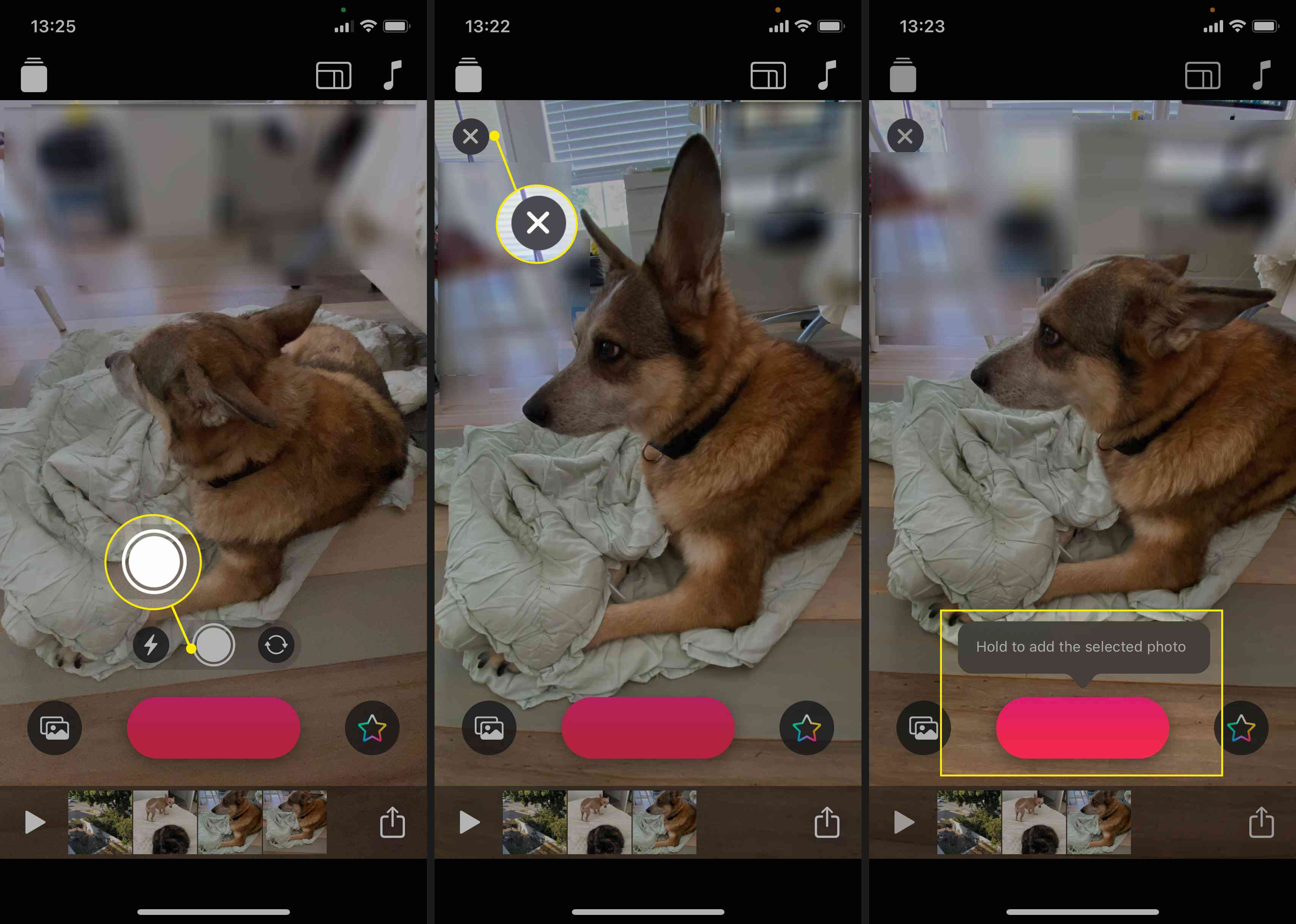 Take and add photos with the Clips app